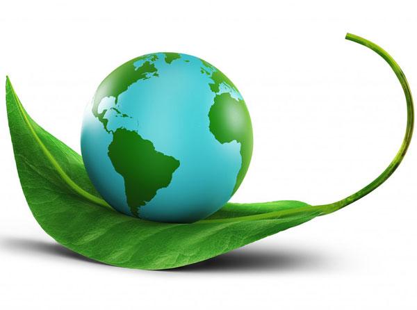 Lớp tập huấn Bắc Giang - Hướng dẫn thực hiện nhiệm vụ bảo vệ môi trường và quan trắc tác động...