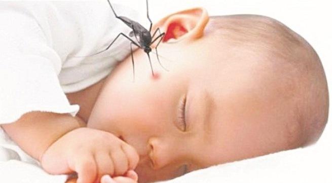 Nguyên nhân, triệu chứng, cách phòng bệnh sốt dengue và sốt xuất huyết dengue