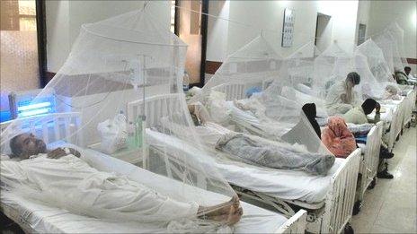 Theo dõi diễn biến và xử trí bệnh sốt xuất huyết